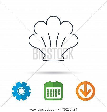 Sea shell icon. Seashell sign. Mollusk shell symbol. Calendar, cogwheel and download arrow signs. Colored flat web icons. Vector