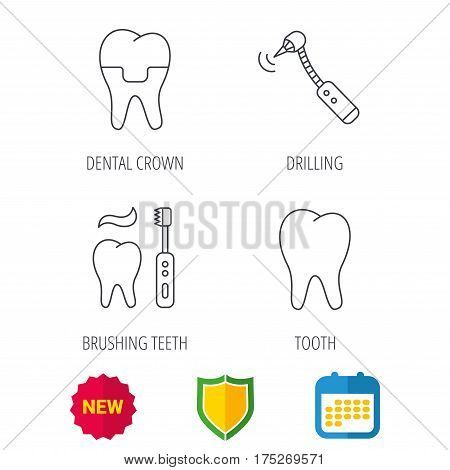 Brushing teeth, tooth and dental crown icons. Drilling tool linear sign. Shield protection, calendar and new tag web icons. Vector