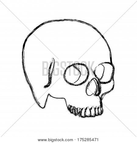 contour skeleton of the human skull icon, vector ilustraction design