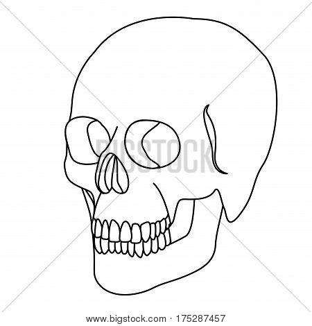 silhouette skeleton of the human skull icon, vector ilustraction design