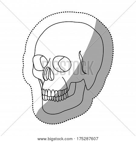 white figure skeleton of the human skull icon, vector ilustraction design