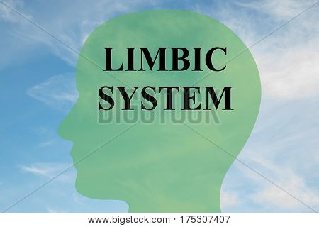 Limbic System Concept