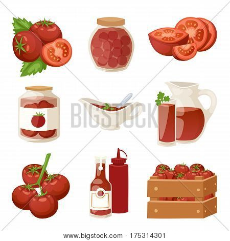Fresh tomatoes with paste isolated on white background and organic red tomato products healthy vegetarian ingredient agriculture vector illustration. Tasty plant ripe raw sauce nature diet food.