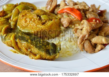 catfish curry and spicy stir fried chicken with basil leaf on rice