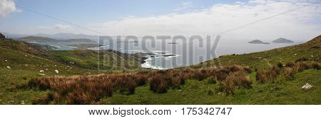 Irish Sea Coast with Bushes Grass and Blue Sky with some clouds