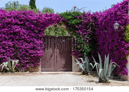 Fasano, Italy - 26 June 2016: Entrance door of a rural house on Puglia Italy