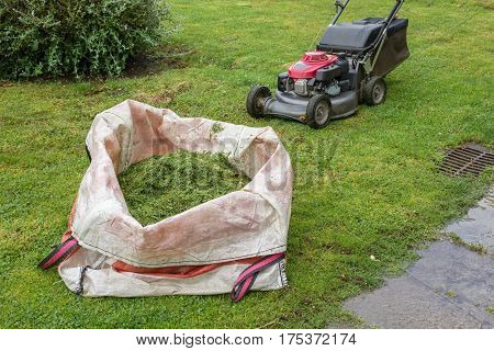 lawn mower and a bag of cut grass on the green lawn