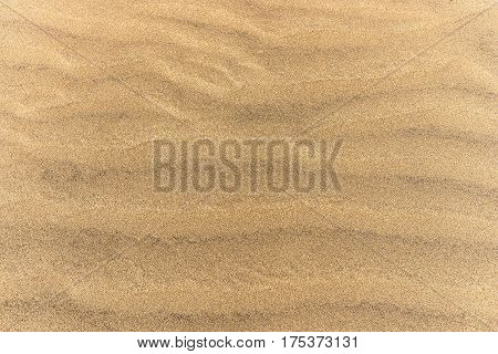 Desert dunes sand texture background in Maspalomas Gran Canaria at Canary islands