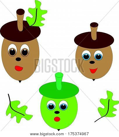 Green and brown acorn on white background with green leafs.Vector illustration.
