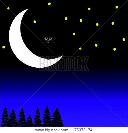 Black cat sitting on the moon on blue- purple background. Vector illustration.