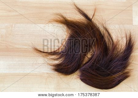 Bunch of trimmed cut off reddish brown hair on wooden floor at hairdressing salon, with copyspace