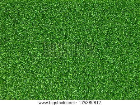 Green grass. natural background texture. fresh spring green grass. 3d rendering.
