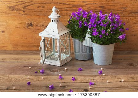 Good candlestick lamp and  flora of springtime flowers campanula, fresh bluebell flowers with wooden background decoration. Lamp of candlestick.