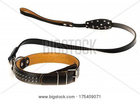 Collar dog collar leash dog leash lead tether dog lead