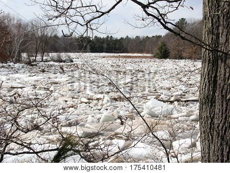 Ice dams up as it breaks up on a freshwater lake