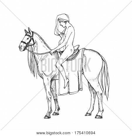 Lady Godiva. Contour illustration. Nude women riding a horse.