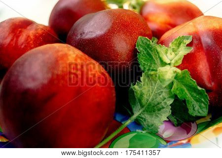 Delicious Nectarines And Peaches On Colorful Plate Appetizer, Picnic Outdoors, Catering Buffet At Su