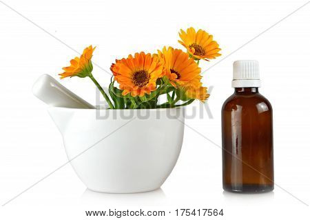 Marigold oil and flowers isolated on white