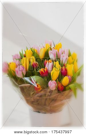 Flower bouquet of multicolor tulips in white vase. Spring vertical background with copy space. Cocept of Women's Day, Mother's Day, Valentine's day, 8 march, Greeting card