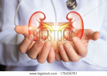 Doctor Supports Kidneys Healthy.