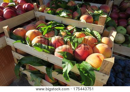 Fresh peaches at the market in Bar-city, Montenegro