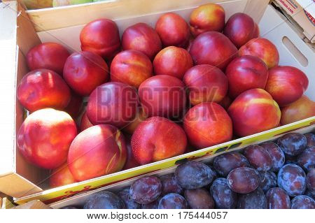 Fresh nectarines at the market in Bar-city, Montenegro