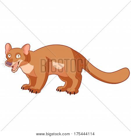 Vector image of the Cartoon smiling fossa