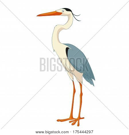 Vector image of the Cartoon smiling Heron