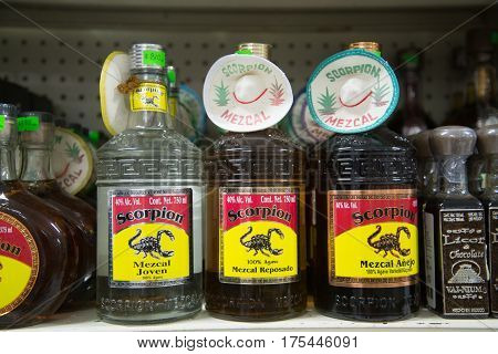 TULUM, MEXICO - Circa january 2017: Alcoholic beverages Mezcal and Tequila bottles. Mezcal is a distilled alcoholic beverage from any type of agave, the plant with Mexican origin.