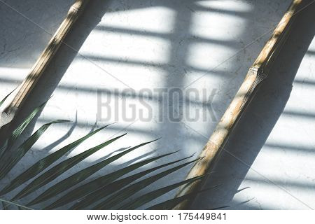 Bamboo cane palm leaf composition on a marble surface. Natural lighting from the window with a filter