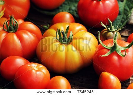 Fresh colorful ripe tomatoes on wooden board. Colorful tomatoes - red, yellow , orange. Harvest vegetable cooking conception.
