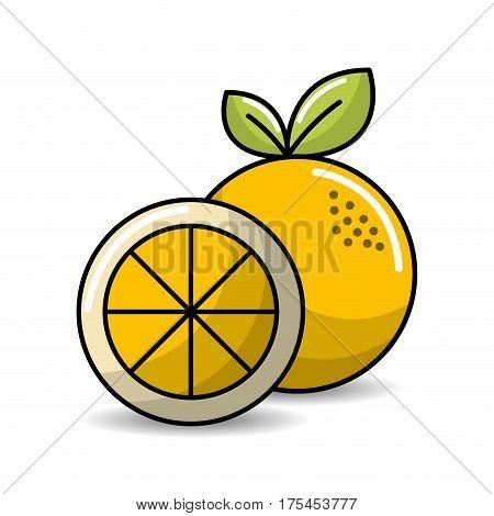 orange fruit icon stock, vector illustration design image