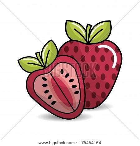 strawberry fruit icon stock, vector illustration design image
