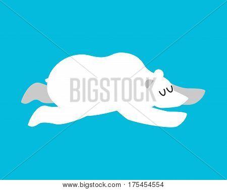 Sleeping Polar Bear. Arctic And Antarctic Animals Sleep. Sleepy Wild Beast