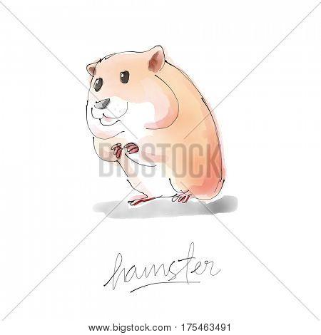 Hamster Watercolor illustration