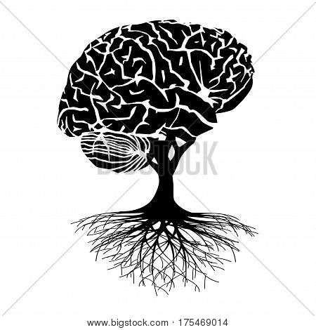 Brain tree illustration silhouette on a white background.