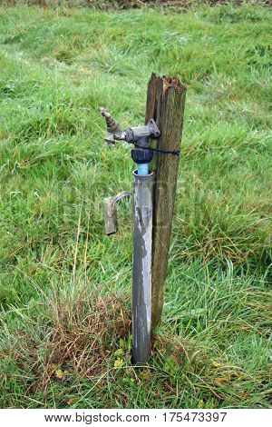 Allotment water tap attached to a broken wooden post and fed by blue plastic pipe. Background of rough grass.