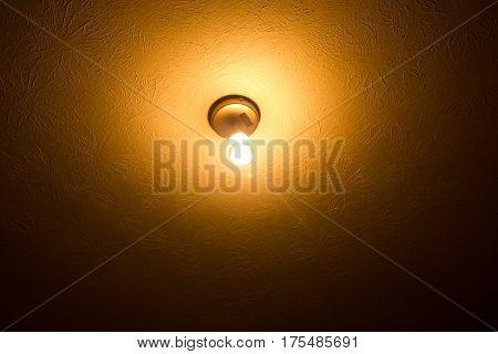 A bare lightbulb illuminates the texture on a ceiling