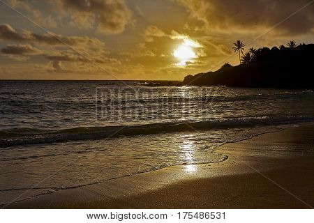 Tropical island sunrise on the beach and sandy shore