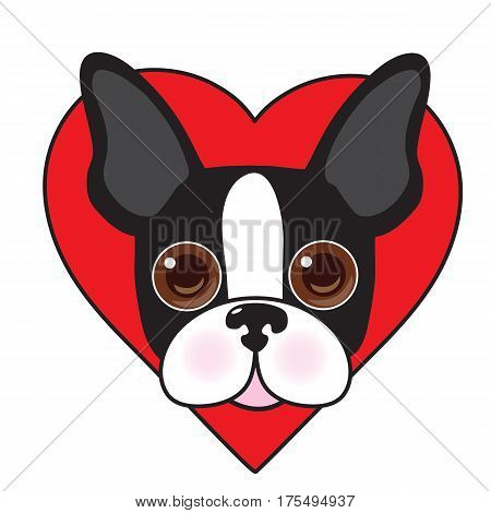 A cute illustration of a Boston Terrier face with a red heart in the background