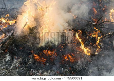 Detail of fire with smoke embers and ashes