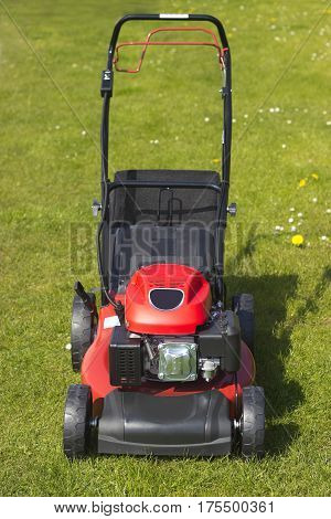 Picture from Lawnmower in summer outdoor on grass