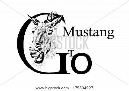 Head of a horse and the inscription Go Gto Mustang