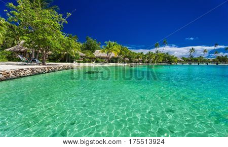 Beach with palm trees at a tropical resort on Moorea island, French Polynesia