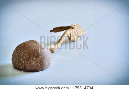 dipper made from Coconut shell on white light