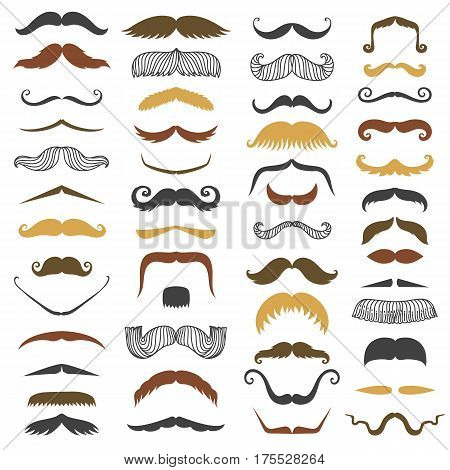 Vector mustache and beard mens silhouette isolated on white background different black and brown colors human face vector. Gentleman symbol fashion adult human facial gave. Cartoon person mask