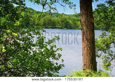 View of the Abtskuecher pond in Heiligenhaus Germany.