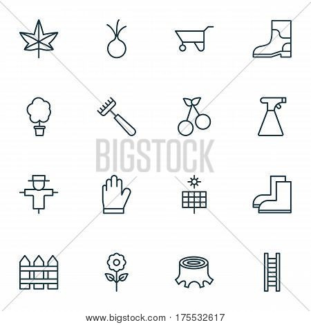 Set Of 16 Garden Icons. Includes Rake, Rubber Boot, Decorative Plant And Other Symbols. Beautiful Design Elements.