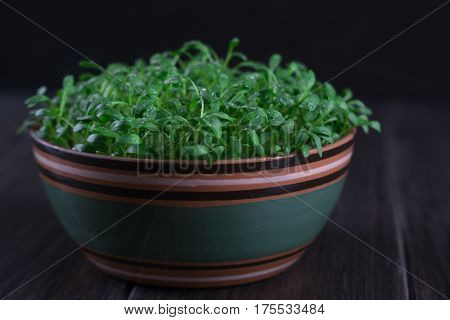 Portion of fresh Garden Cress detailed close-up shot on wooden background. Healthy vegetarian food.Fresh herbs.