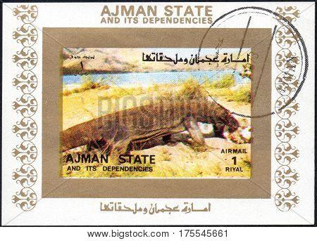 UKRAINE - CIRCA 2017: A stamp printed in AJMAN STATE and its dependencies United Arab Emirates shows varan series animals circa 1973